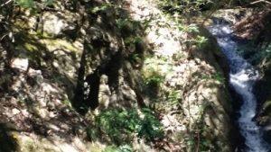 清荒神の龍王滝の不動明王