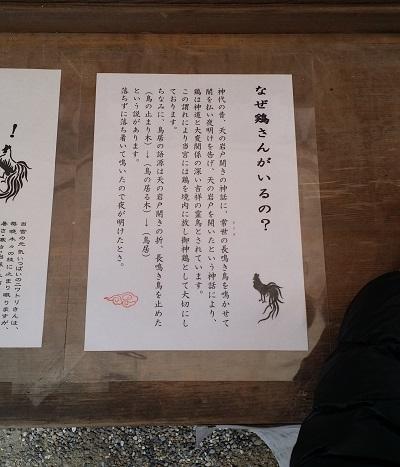 石上神宮の鶏のご由緒書き