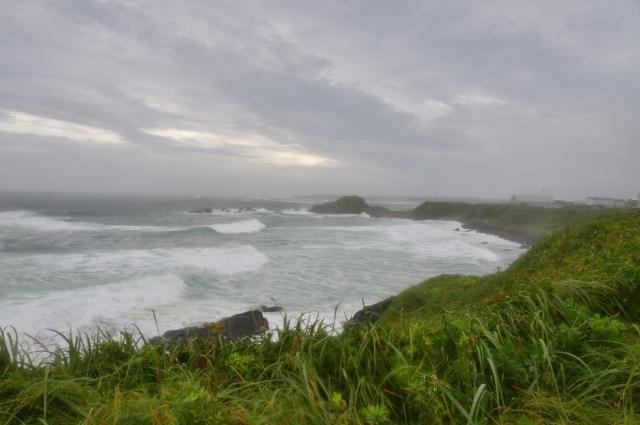 台風でうるさい風
